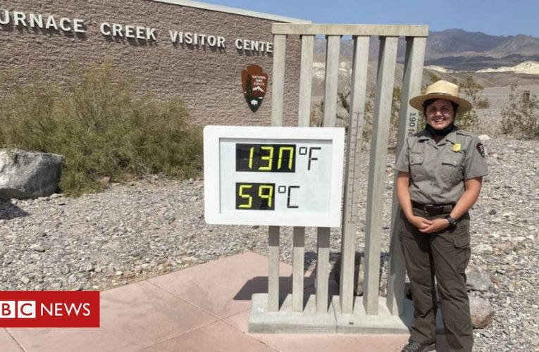 Life in the 'hottest place on Earth'