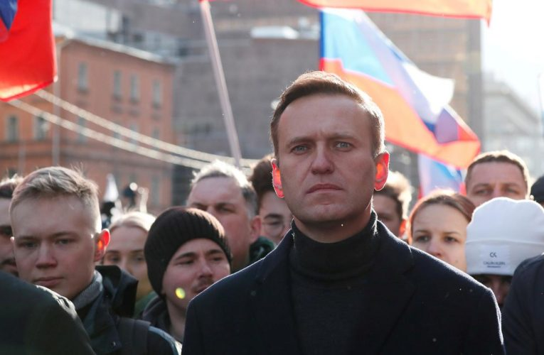 Russia says it has seen hostile comments from abroad on Navalny's health