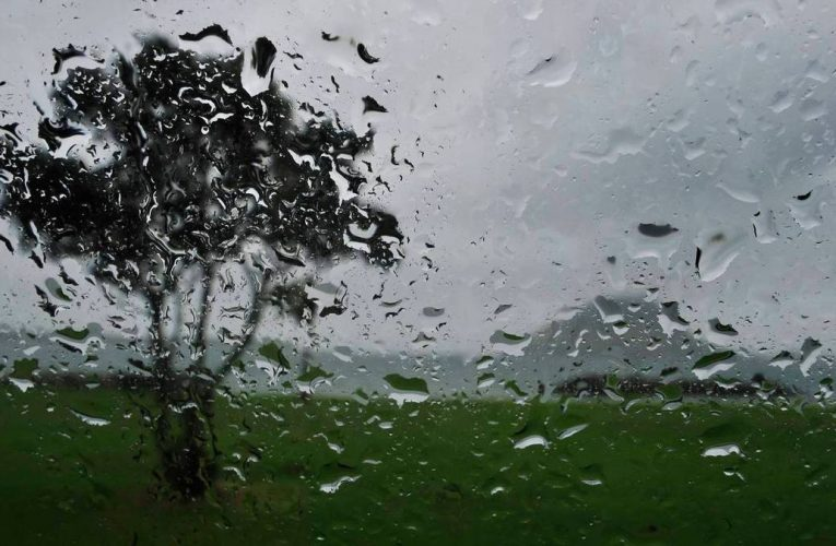 Severe weather warning: Heavy rain and strong winds to lash South Island