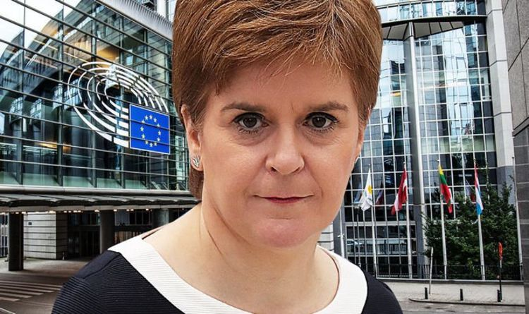 Sturgeon's bluff called! Eustice rocks SNP over Brexit plans to keep Scotland tied to EU