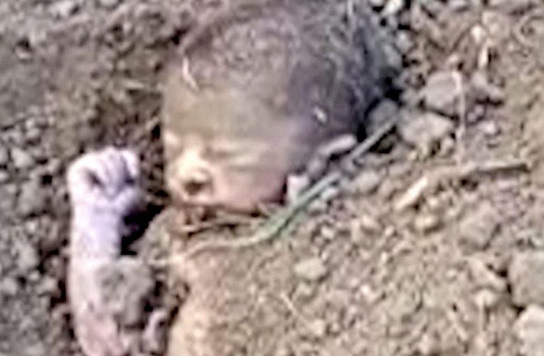 Newborn baby pulled out of the ground after being buried alive on farm