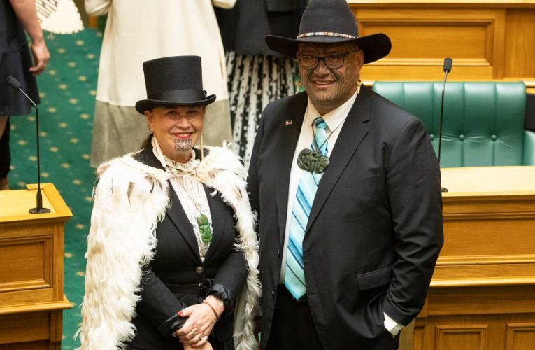 Māori Party MPs walk out of Parliament in protest