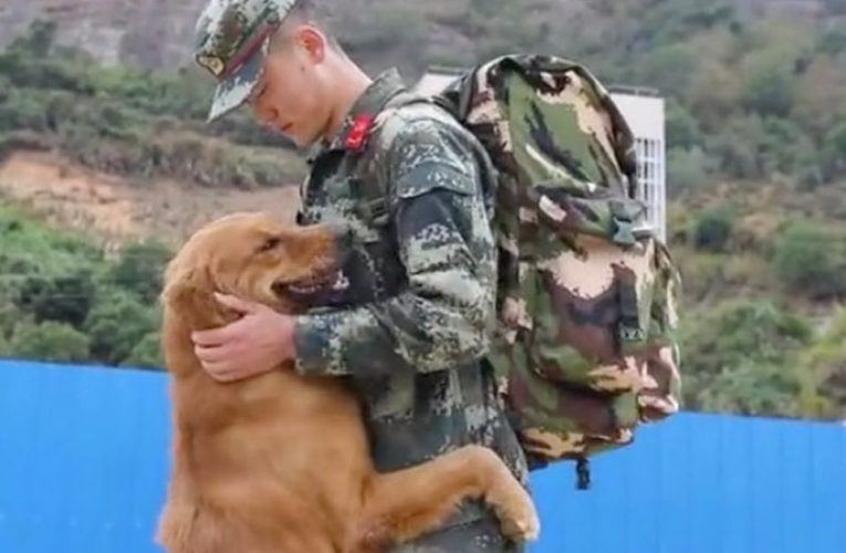 Army dog chases after handler for final heartbreaking farewell before retiring