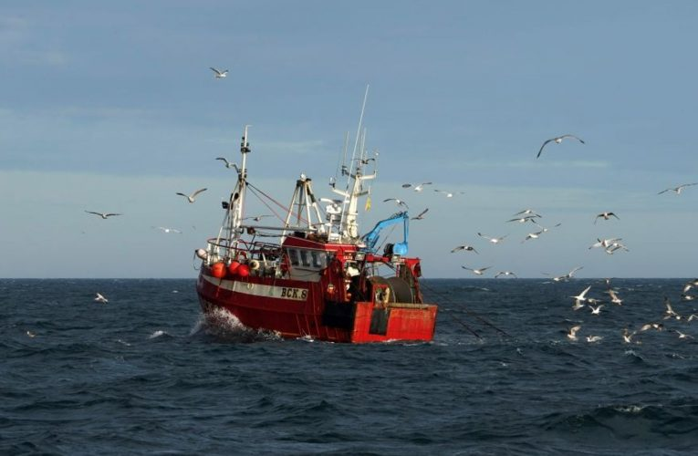 Brexit: 'Significant progress' in talks over fishing rights during trade negotiation – EU sources