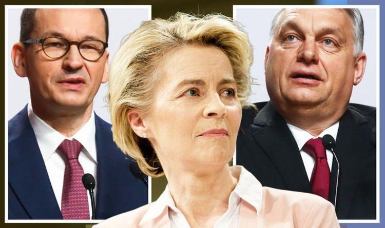 EU civil war: Hungary and Poland sues Brussels in bid to trash new good behaviour rules
