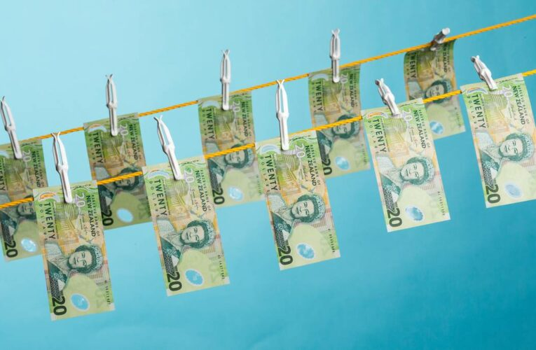 Abuse of NZ shell companies and trusts highlighted in global money laundering report