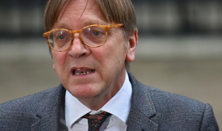 Time to fix 'weak' EU! Verhofstadt in scathing attack on VDL after Turkish embarrassment