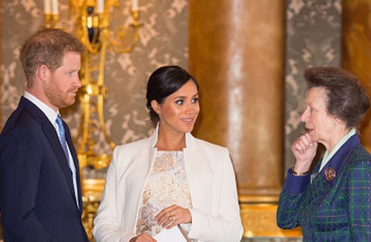 Princess Anne 'thought Meghan was unsuitable for Harry and attention seeking'