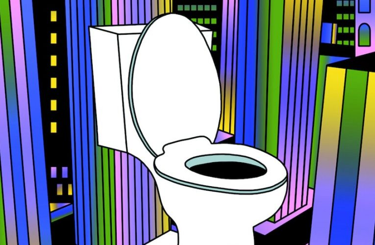 Opinion | 'Appalling Lack of Public Toilets' in the U.S.