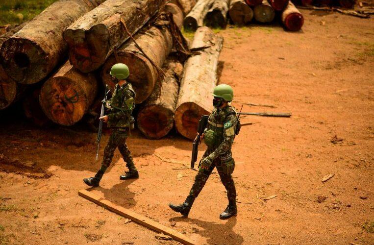Amazon deforestation rose 17% in 'dire' 2020, data shows