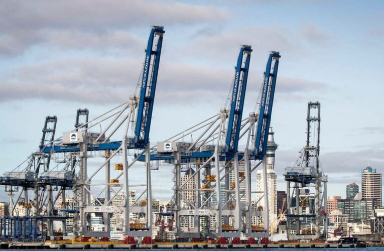Community leaders threaten action if Auckland port bosses don't resign