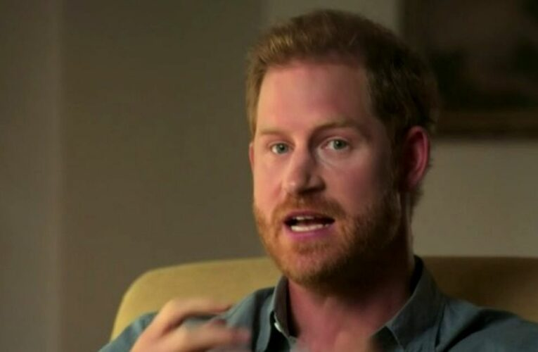 Prince Harry's new 'woke lecturing celeb' life sounds like 'too much for him'