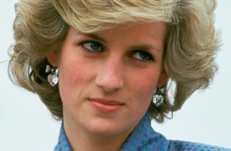 People 'queued up to see' Princess Diana's body in hospital room, aide claims
