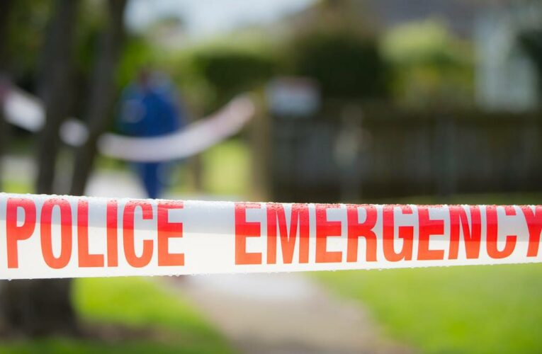 Woman in her 90s and son in his 70s seriously injured in assault in their Napier home
