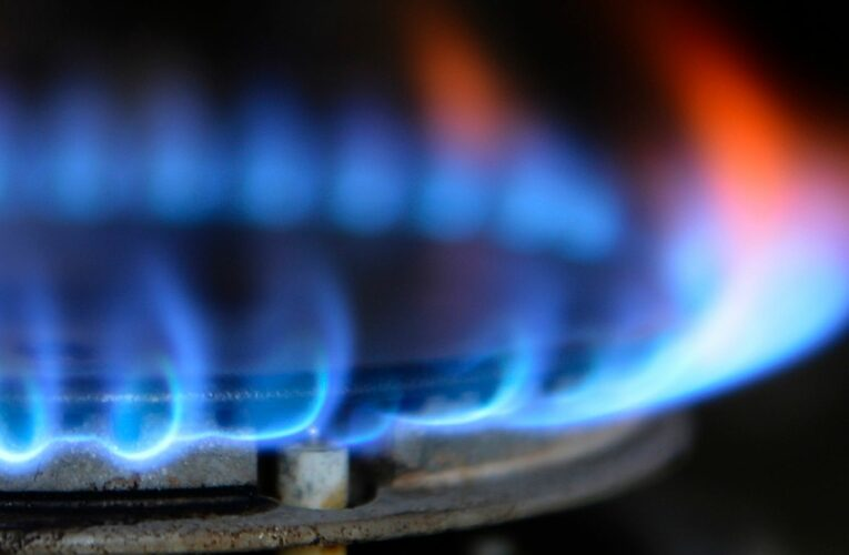 Energy supplier Green lines up insolvency advisers amid industry crisis