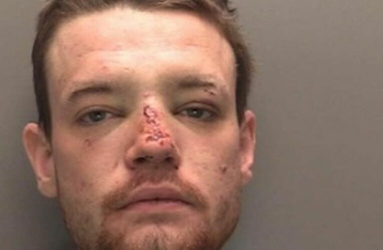 Hero stopped rapist's sick attack by getting him in chokehold and punching face