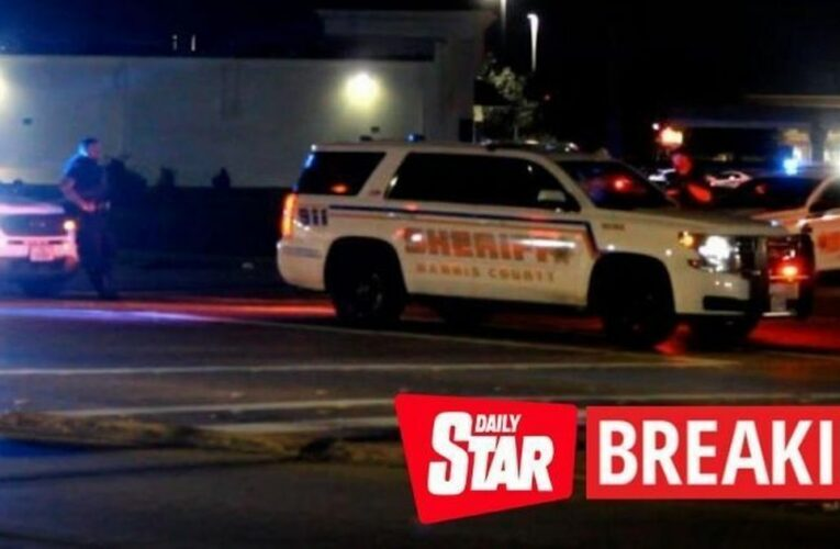 Police officer 'shot to death and two cops wounded in ambush at nightclub'