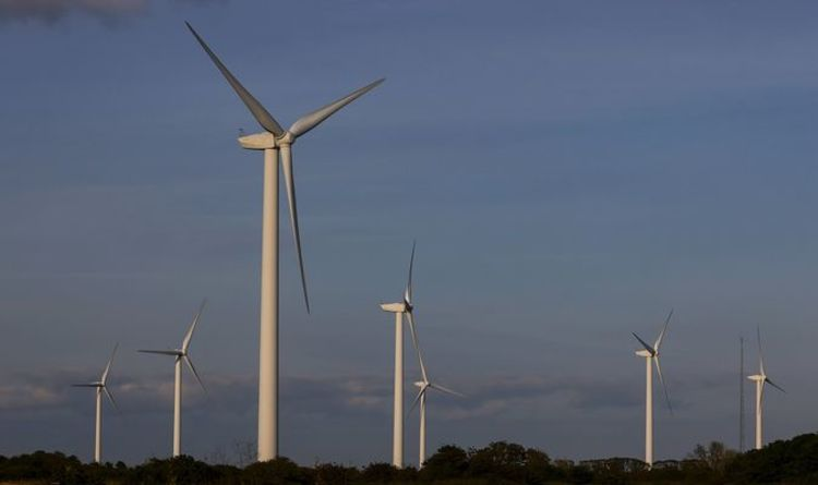 Turn to wind set to provide 'cheaper, cleaner power' and bring down bills